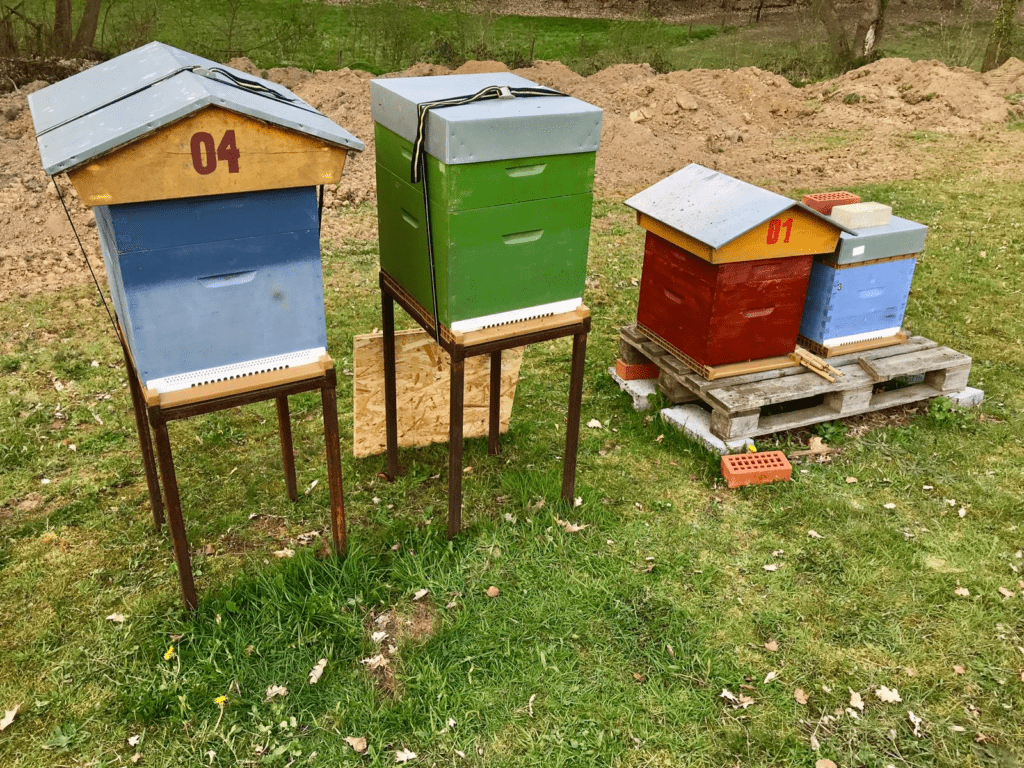 Save Bee - installer une ruche dans son jardin