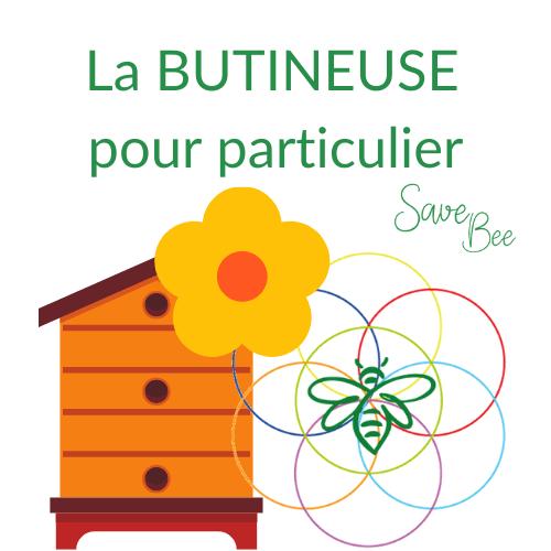 acheter des abeilles - geste pour l'environnement